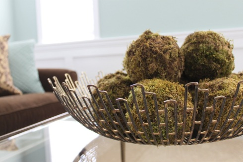 DIY-Organic Moss Balls